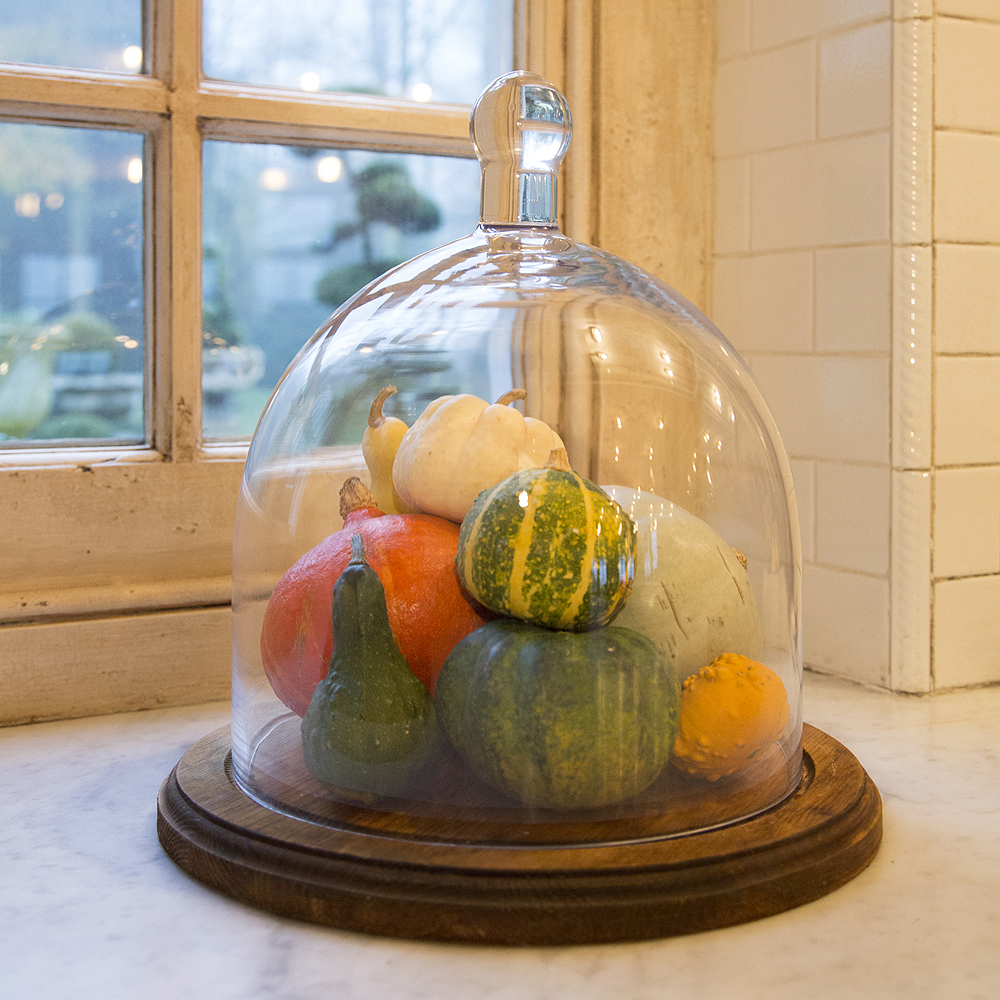 Hand Blown Glass Cloche Glass Display Dome Mgd Aldgate